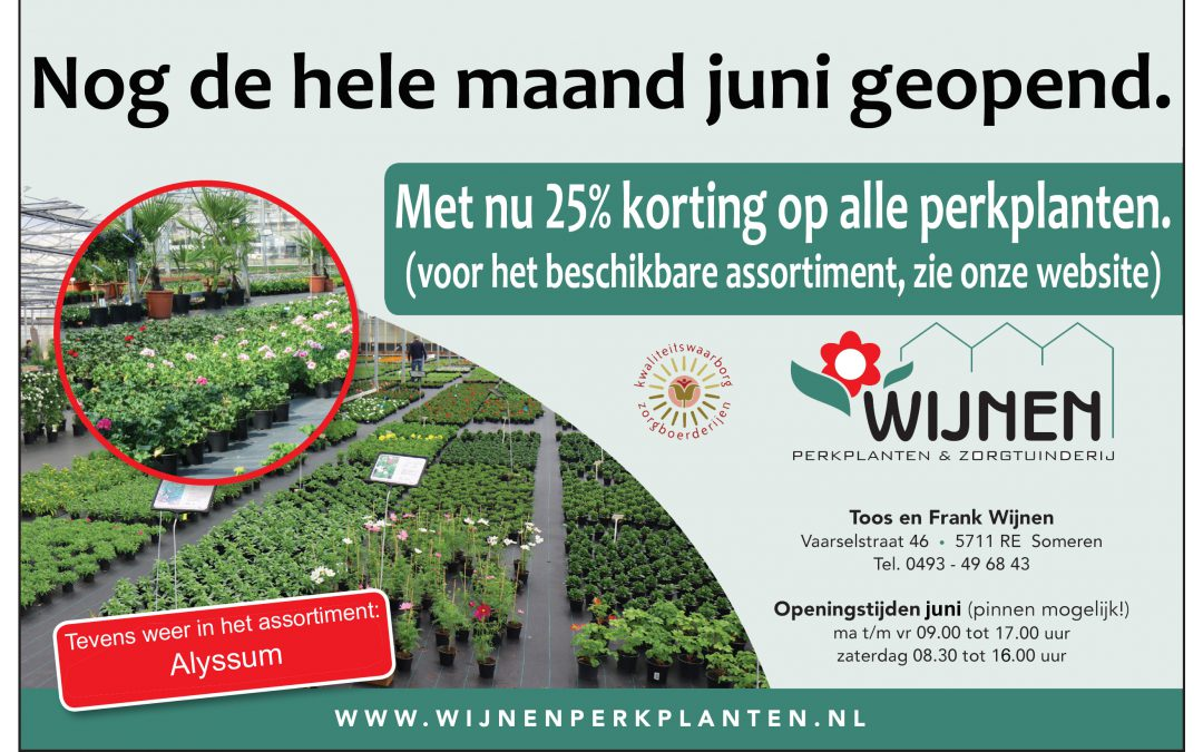 25% KORTING op alle perkplanten.